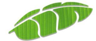 Aritaku