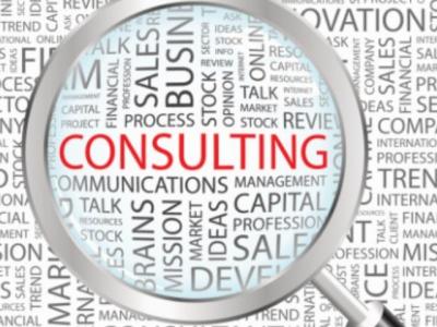 Desi Consulting Companies